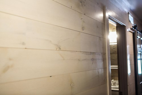 Whitewash shiplap color idea.